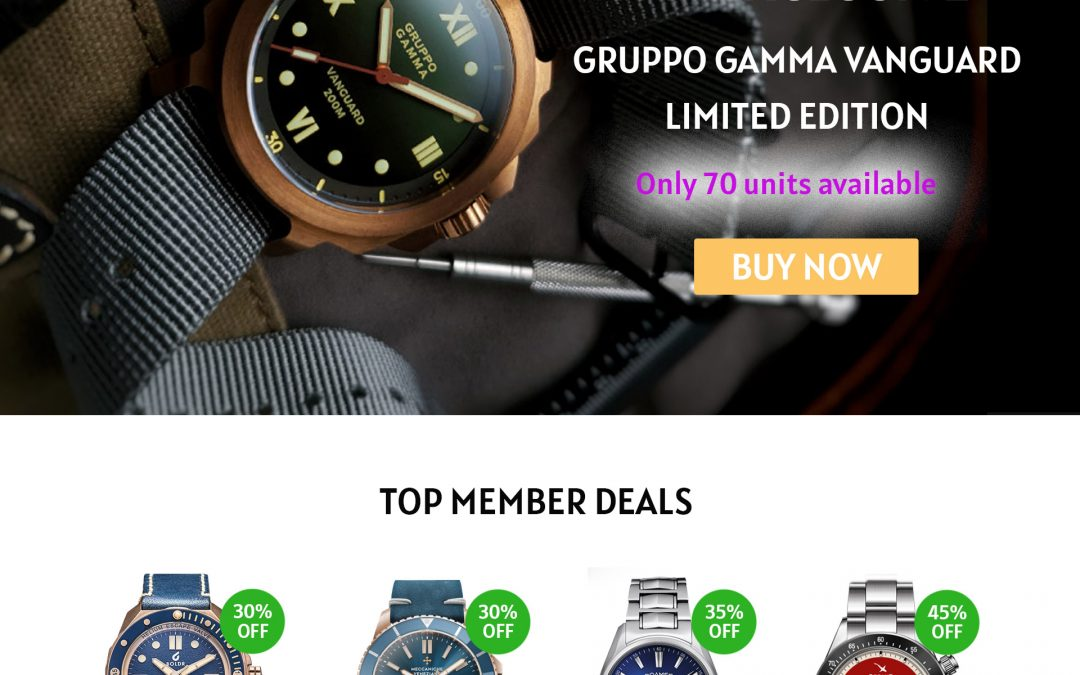What is the Timepiece Monthly Members Store?